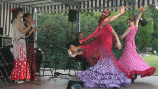 spectacle flamenco paris (10)