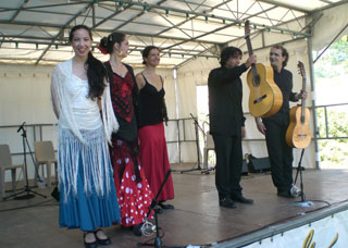 spectacle flamenco paris (26)