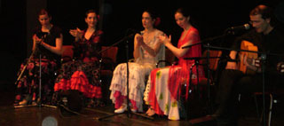 flamenco-paris-5