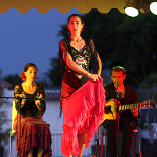 Flamenco-Paris-4